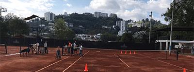 arrienda cancha en Liga Caldense de Tenis de Campo Sede Bosque Popular